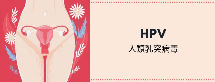 HPV人類乳突病毒